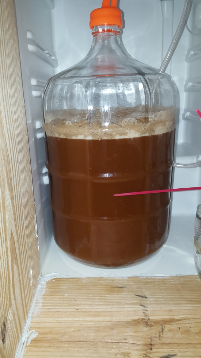 cream ale in chamber